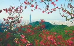 Taiwan offers cultural festivals, majestic landmarks, and scenic spots.