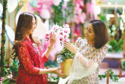 Buy orchids at Sunway Putra Mall's flower market. – SUNWAY MALLS