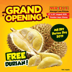 MR.D.I.Y. offers 1,000 free durians