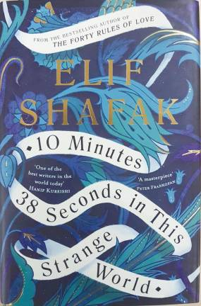 Book review: 10 Minutes 38 Seconds In This Strange World