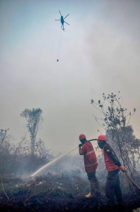 A water-bombing helicopter douses the burning peatland as firefighters continue to battle the blaze in Kampar of Riau province on September 18, 2019. Toxic haze from Indonesian forest fires closed schools and airports across the country and in neighbouring Malaysia on September 18, while air quality worsened in Singapore just days before the city's Formula One motor race. AFP PIX.