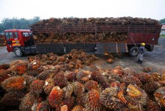 Palm oil demand to remain weak in first-half 2020 due to virus lockdowns: MPOB 1
