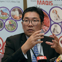 Maqis foils entry of 51.87 tonnes of frozen chicken without permit, halal status