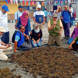 MOA secretary-general Datuk Mohd Sallehhuddin Hassan (seated, fourth from left), visiting a seaweed project at Ligit-Ligitan Island in Semporna today. — Bernama