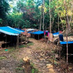 A view of the temporary settlement of Semaq Beri orang asli tribe at Kampung Gerdong, Hulu Terengganu on June 16, 2019. — Bernama