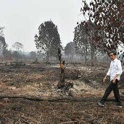 This handout picture taken on September 17, 2019 shows Indonesian President Joko Widodo inspecting the damages from the ongoing forest fires in Pekanbaru, Indonesia. — AFP