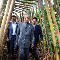 Prime Minister Tun Dr Mahathir Mohamad (C) with Water, Land and Natural Resources Minister Dr A. Xavier Jayakumar (L) at the Hutan Kita (Our Forests) exhibition at the Kuala Lumpur Tower, on Aug 23, 2019. — Bernama