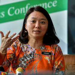 Govt mulls amending law on conferring Malaysian citizenship: Hannah Yeoh