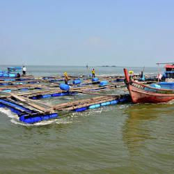 Two fishing boats raise fish cages that were damaged in the storm caused by typhoon Lekima, in Nibong Tebal, today. — Bernama