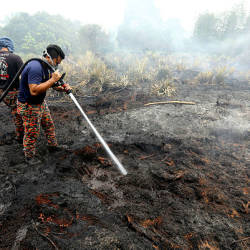 Firemen work to put out the leftovers of a fire at a forest near Kampung STC, Sri Aman today. — Bernama