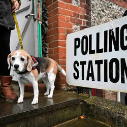 A voter leaves with their dog Lilly, after casting their vote at a polling station in Church in Brighton as Britain holds a general election on Dec 12, 2019 — AFP
