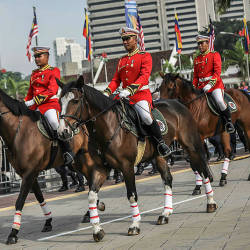 City Hall's (DBKL) mounted horse unit was given the honour to lead the parade during its Golden Jubilee Enforcement Day at Dataran Merdeka in Kuala Lumpur. — Sunpix by Adib Rawi Yahya