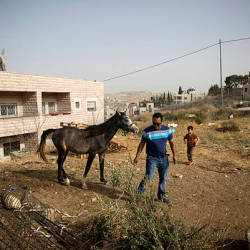 Ismail Obeideh walks with his horse near his home in the Palestinian village of Sur Baher, which sits on either side of the barrier in East Jerusalem and the Israeli-occupied West Bank, on July 17 — Reuters