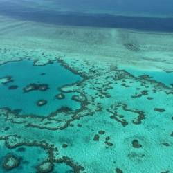 The Great Barrier Reef faces multiple threats to its survival. — AFP