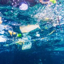 Brands are teaming up to tackle plastic waste levels in the ocean.