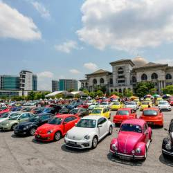 Farewell to the Beetle at An Iconic Gathering