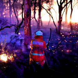 This photo taken on Dec 7, shows a firefighter conducting back burning measures to secure residential areas from encroaching bushfires at the Mangrove area, some 90-110km north of Sydney. — AFP