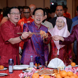 From left: Finance Minister Lim Guan Eng, President of Malaysia-China Chamber of Commerce Tan Yew Sing, Deputy Prime Minister Datuk Seti Dr Wan Azizah Wan Ismail and China's ambassador to Malaysia, Bai Tian, during a Lunar New Year ceremony, on Feb 16, 2019. — Bernama