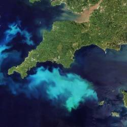 Bright blue sea off Cornwall. Image: NASA Earth Observatory / Joshua Stevens