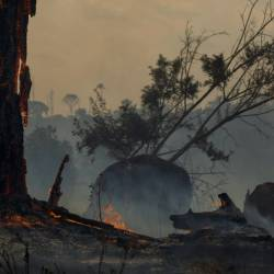 Deforestation in the Amazon has been blamed for the sharp increase in fires as land is cleared and burned for cattle grazing or crops. — AFP