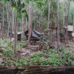 One of the 28 camps found at Wang Kelian, Perlis near the Malaysian-Thai border. Picture from May 25, 2015.