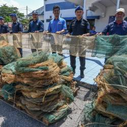 Example of dragon fish traps. — Bernama