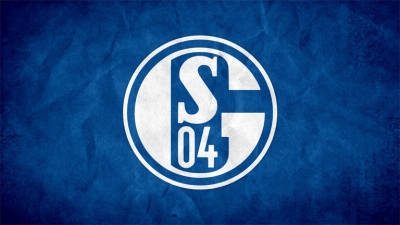 Schalke admit to needing 'massive savings' to survive