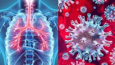 New research says players at risk of coronavirus spread to lungs