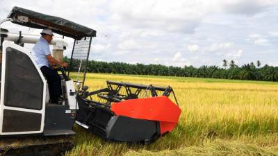 Agriculture and Food Industry Minister Datuk Seri Dr Ronald Kiandee conducts a rice harvest demonstration using a rice paddy machine at the Sungai Setar Kechil paddy field in Seberang Perai Selatan on June 20, 2020. - Bernama