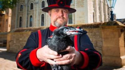 Ravenmaster Christopher Skaife. Image by Historic Royal Palaces