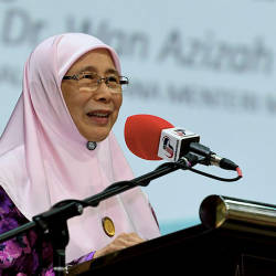 Malaysia aims to be the new tiger of Asia: Wan Azizah