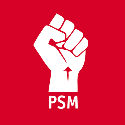 PSM picks youth wing committee member as candidate for Semenyih by-election