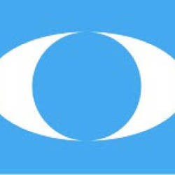 Seputeh division chairman sacked for slander against PKR leaders