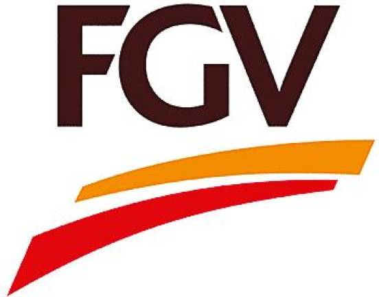 Five ex-directors countersue FGV