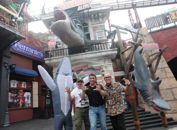 Brace yourself for a shark-tacular attraction