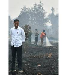 This handout picture taken on September 17, 2019 shows Indonesian President Joko Widodo inspecting the damages from the ongoing forest fires in Pekanbaru. — AFP