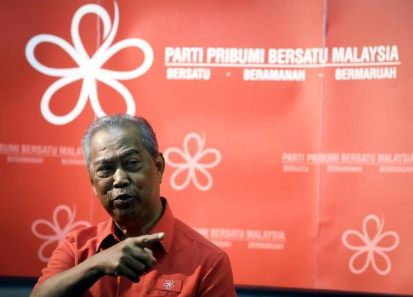 Bersatu champions new Bumiputera Agenda as national mission: Muhyiddin