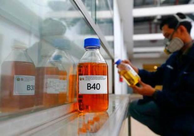 Indonesia to revise palm oil levy to support biodiesel programme