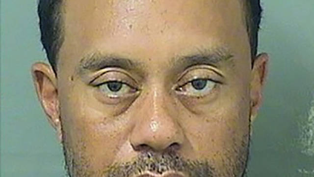 Tiger Woods arrested on suspicion of drink driving
