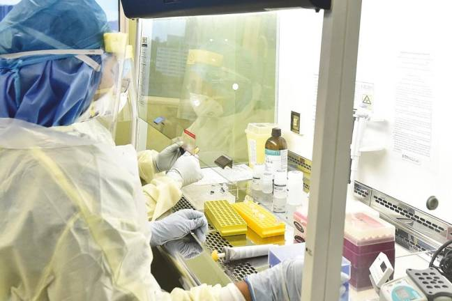 MSU aims high with Postgraduate Biomedicine programme