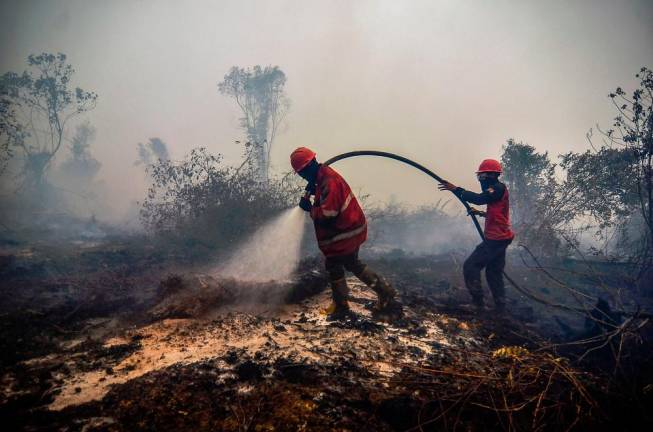 Firefighters battle the burning peatland in Kampar of Riau province on September 18, 2019. Toxic haze from Indonesian forest fires closed schools and airports across the country and in neighbouring Malaysia on September 18, while air quality worsened in Singapore just days before the city's Formula One motor race. AFP PIX.