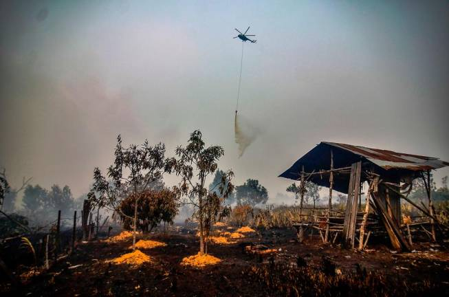 A water-bombing helicopter douses the burning peatland in Kampar of Riau province on September 18, 2019. Toxic haze from Indonesian forest fires closed schools and airports across the country and in neighbouring Malaysia on September 18, while air quality worsened in Singapore just days before the city's Formula One motor race. AFP PIX