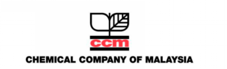 CCM's Q4 earnings jump more than seven-fold
