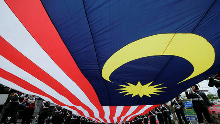 Pasir Gudang political parties, NGOs urge firm action for insulting national symbol