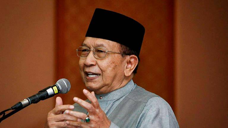 New party will only divide Malays further: Rais Yatim