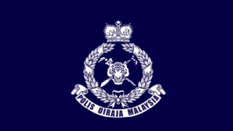 Marine police foil attempt to smuggle in nine protected animals in Muar