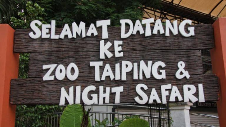 Image result for Taiping Zoo & Night Safari