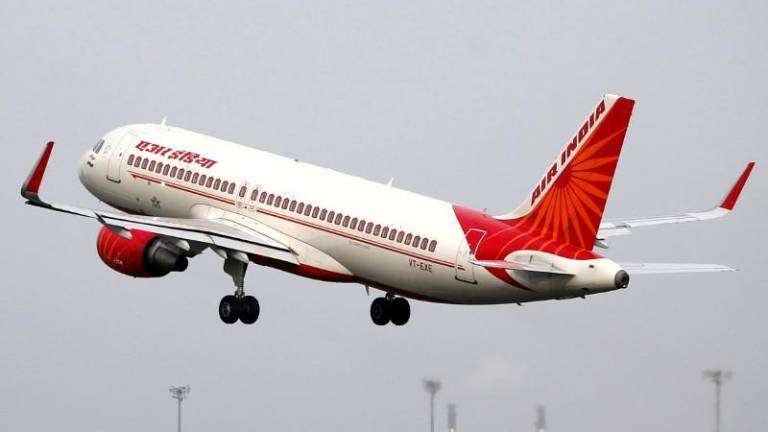 Buzz off! Angry bees delay Air India flight