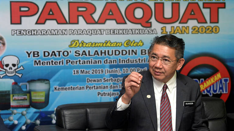 Total ban on paraquat from 2020: Salahuddin