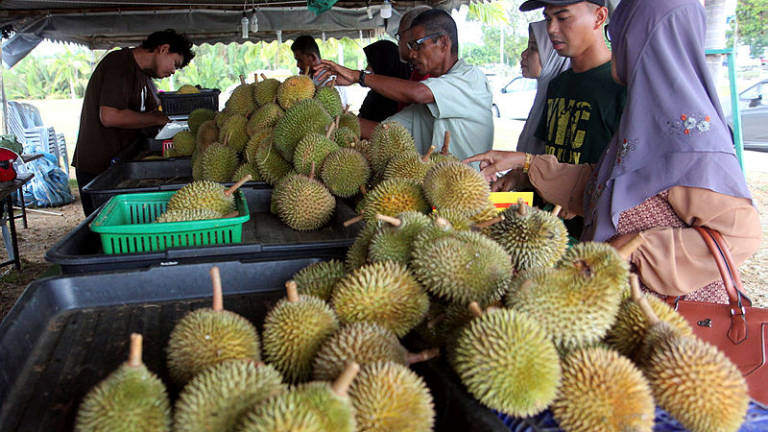 Don't hastily boycott durians sold in weight: Exco